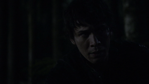 The Calm 098 (Bellamy)