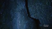 706 Organic Cave lifeform