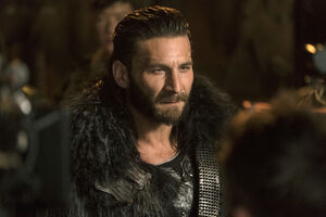 The 100 - DNR pic 10 - Roan