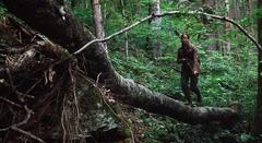 Katniss cazando en el bosque