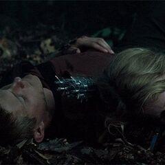 Катон и Диадема перед атакой ос-убийц