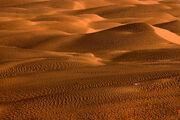 Desert150