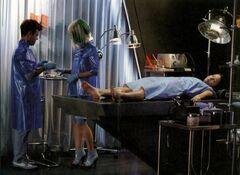 Flavius y Venia con Katniss