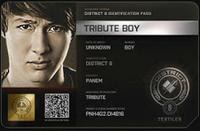 Identificación de Tributo masculino del Distrito 8 (74º JH)