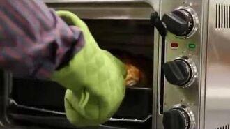 Pizza Dog (9 sec video)