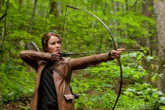 Bow and arrow | The Hunger Games Wiki