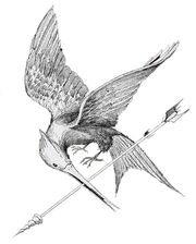 Mockingjay sketch by TOB