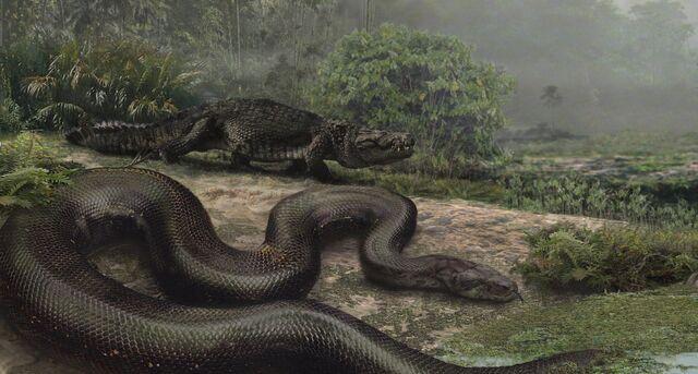 File:Largest-snake-ever-crop.jpg