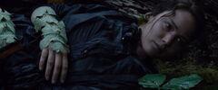 Katniss despertando luego de ser picada por las rastrevíspulas