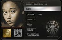 Identificación de Rue