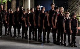 Tributes of 74th hungergames