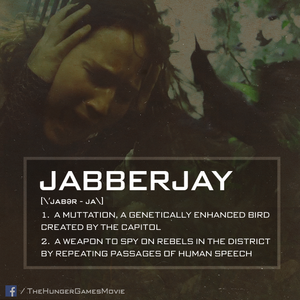 Jabberjay