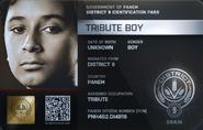 District 9 Tribute Boy ID Card 2