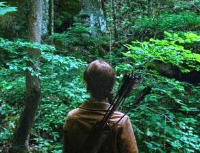 Китнисс в лесу