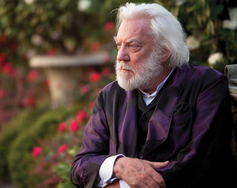 president snow hunger games