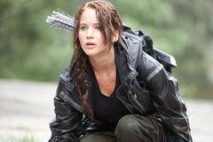 Katniss en la arena de los 74°