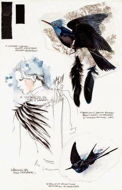 Libro de diseños de Cinna