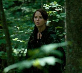 Китнисс в лесу-2