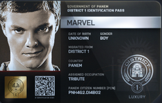 Marvel ID Card
