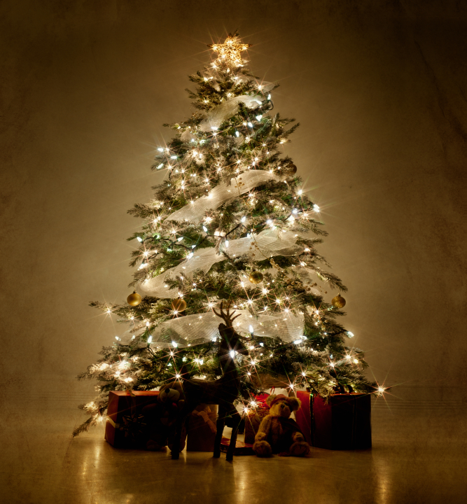 christmas treejpg - What Is A Christmas Tree