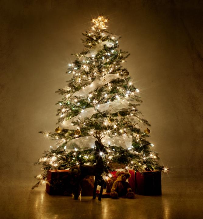 Christmas Tree Jpg
