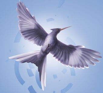 Mockingjay (bird) | The Hunger Games Wiki | Fandom