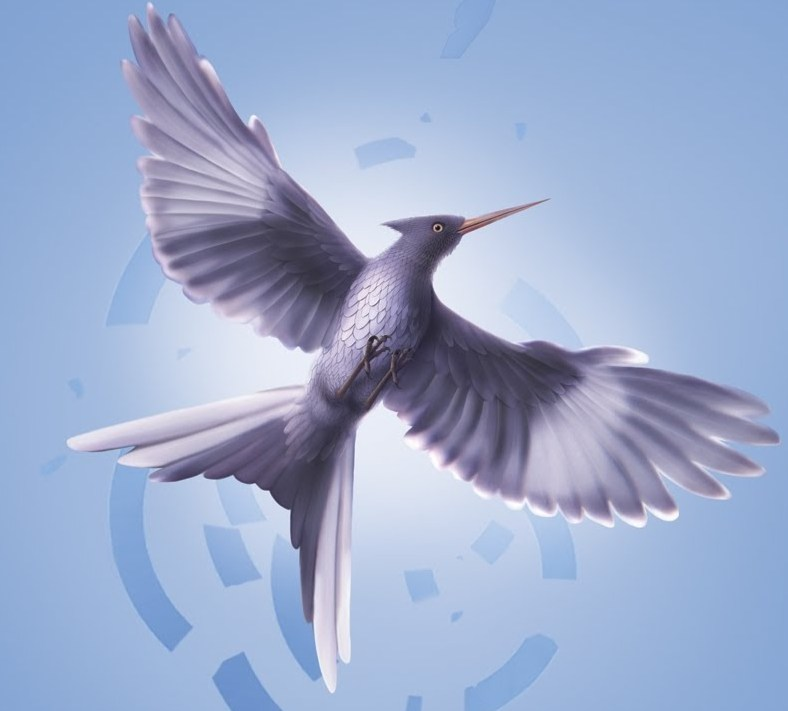 Mockingjay Bird The Hunger Games Wiki Fandom Powered By Wikia