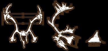 Antlers reindeer