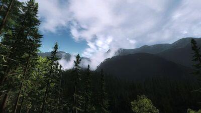 RFF Panorama1