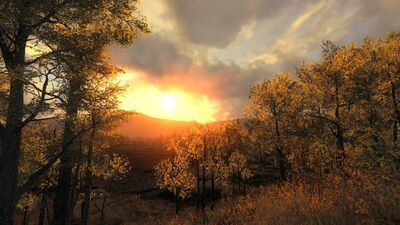 Hirschfelden Sonnenuntergang