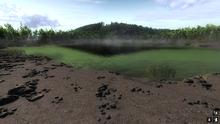 Lake Forrest 1