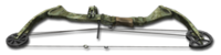 Compound bow 256
