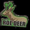 Roe Deer C