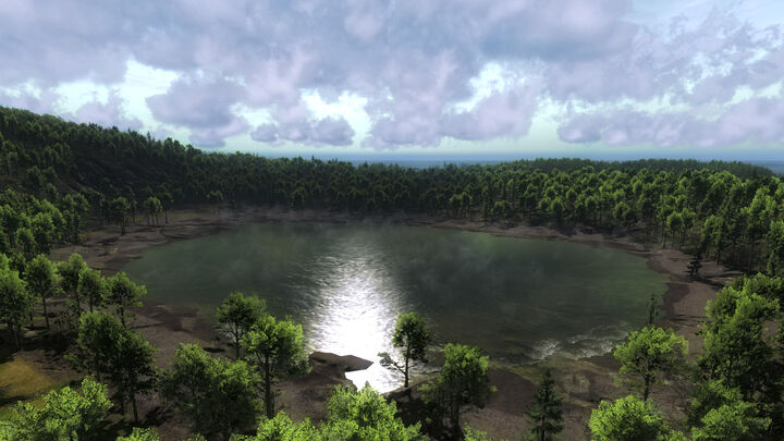 Forest lake 002