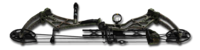 Compound bow pulsar forest