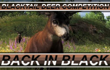 Comp Blacktail Back in Black