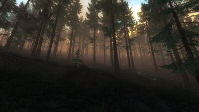 RFF Panorama2