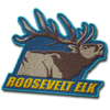 Roosevelt Elk C