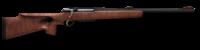 Rifle 308 anschutz