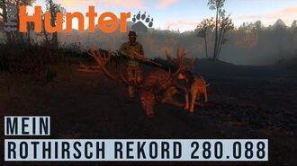 Rothirsch Rekord mit 280.088 Score