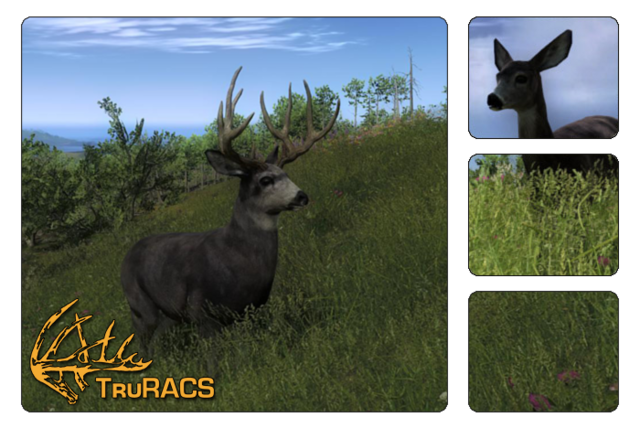 File:Species mule deer 700.png