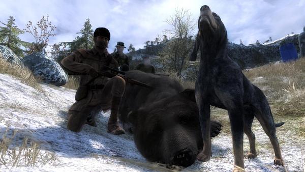 JesteMysliwym silver tipped brown bear 28