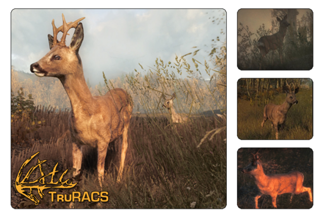 File:Species roe deer 700.png