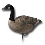 Decoy goose sentry 256