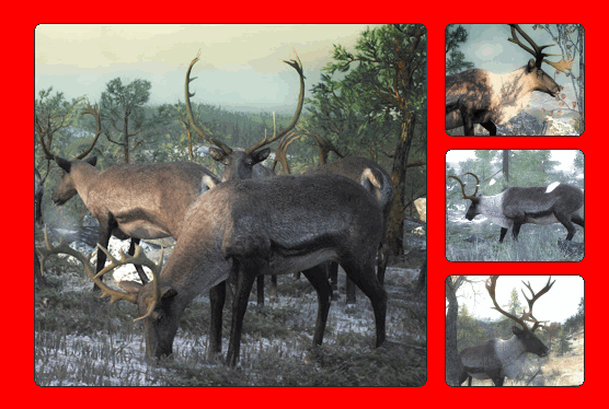 File:Species reindeer 700.png