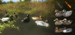 Duck decoys new1