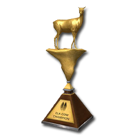 Trophy elk cow gold
