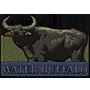 Water buffalo badge