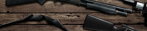 Header image weapons 5