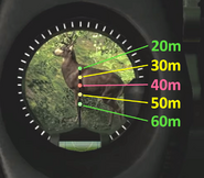 Compound sight aiming